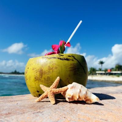 Fragrance Noix de coco des caraibes